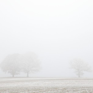 English Landscape Snow